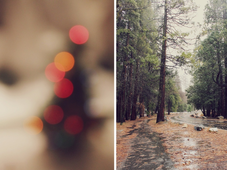 A Yosemite Engagement | Ann-Marie Loves Paper