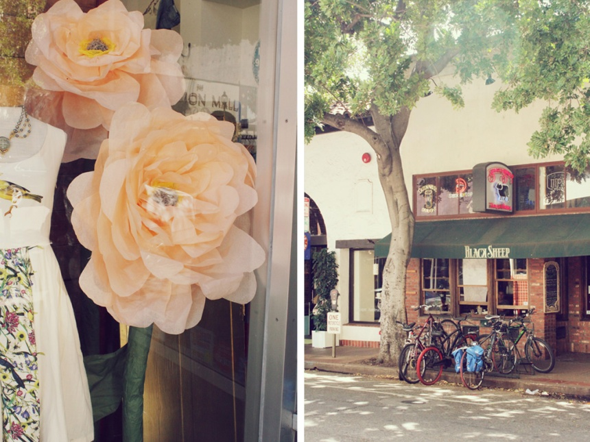 weekend getaway | san luis obispo | ann-marie loves paper